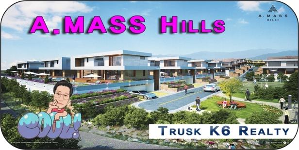 Amasshills-rental1